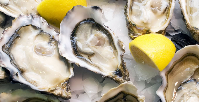 thicker beard oysters